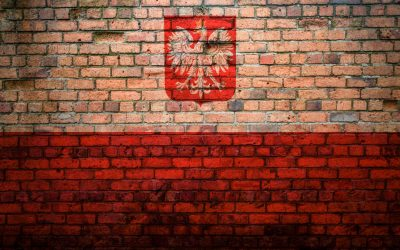 Poland included E-RIHS.pl in its roadmap